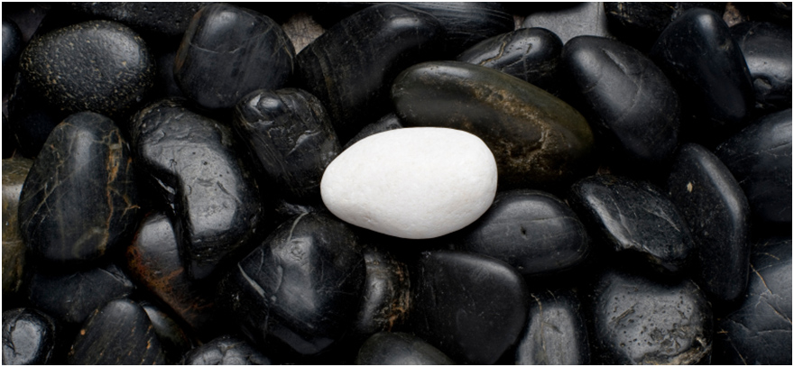 White pebble on black pebbles